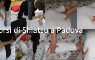 Corsi di Shiatsu a Padova riconosciuti in Italia con la normativa di legge 4/2013 per la professione di operatore delle discipline Bio Naturali