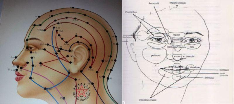 riflessologia facciale Scuola Shiatsu Yù Zhòu