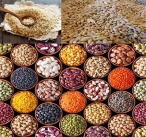 cereali legumi