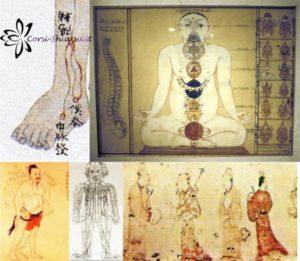 12 meridiani MTC Medicina Tradizionale Cinese