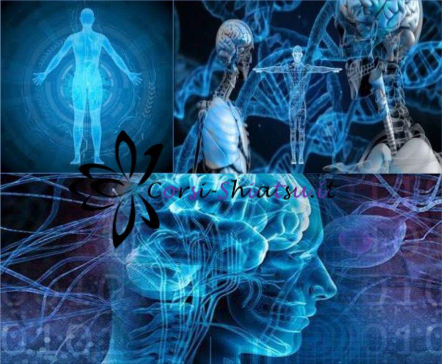 Fibromialgia Shiatsu e Riflessologia
