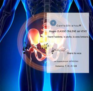 CantoShiatsu addome zona lombare pelvica e articolazione delle anche