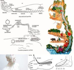 Corso di Riflessologia online
