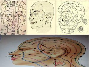 Riflessologia facciale corso online