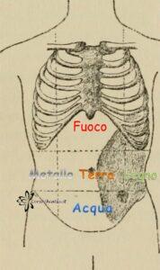 Diagnosi MTC Addome